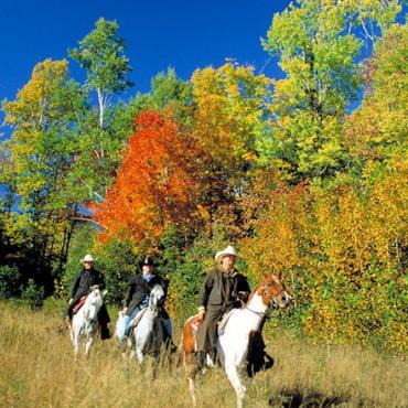 New Brunswick horseriders.jpg