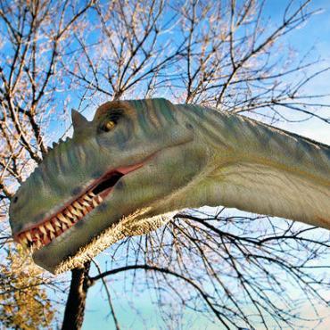 AB-Calgary-Zoo[1].jpg