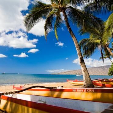 Hawaii canoes on beach.jpg