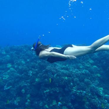 HI Snorkelling (2).jpg