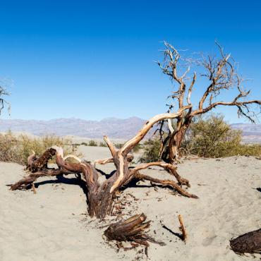 CA Death Valley.jpg