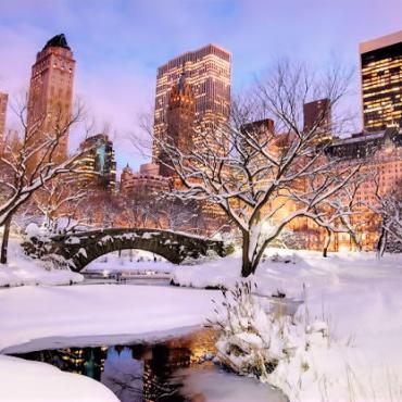 NYC central park snow.jpg
