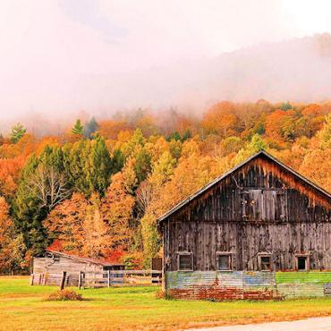 VT barn fall colours.jpg