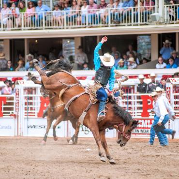 AB Calgary rodeo stampede