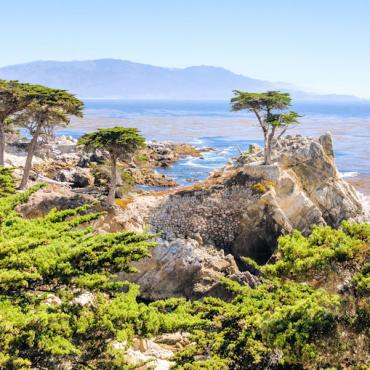 CA Lone_Cypress_17-Mile_Drive