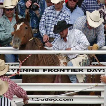 Cowboy lassoing bull