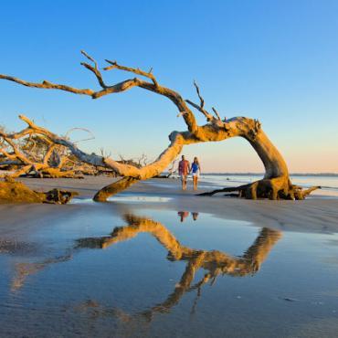 GA Driftwood Beach Credit Georgia Department of Economic Development