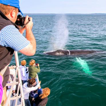 NS Bay of Fundy Credit Tourism Nova Scotia
