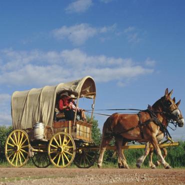 Horse drawn chuck wagon