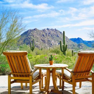 Scottsdale cactus view