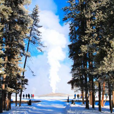 WY Winter in Yellowstone geyser