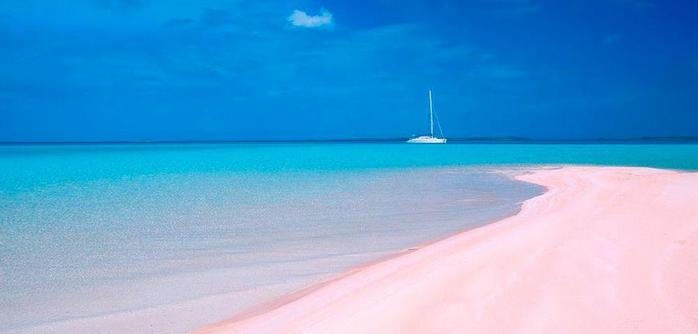 BAH pink-sands-beach-harbour-island