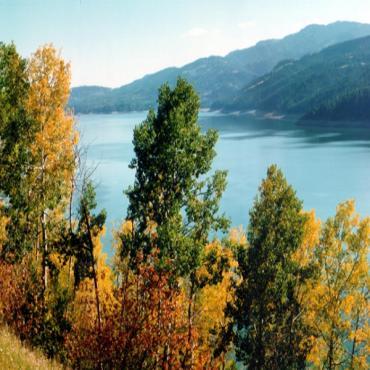 Lake and fall foliage ID