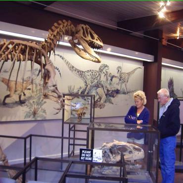 Dinosaur Natl Monument Museum UT