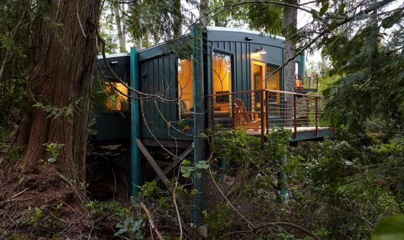 Middle Beach Lodge Tree House BC