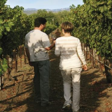 Walk thru vineyard CA