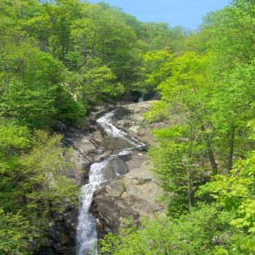 Whiteoak canyon Shenandoah
