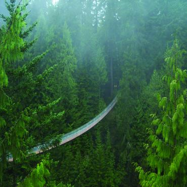 Capilano suspension Bridge Chilcotin Coast