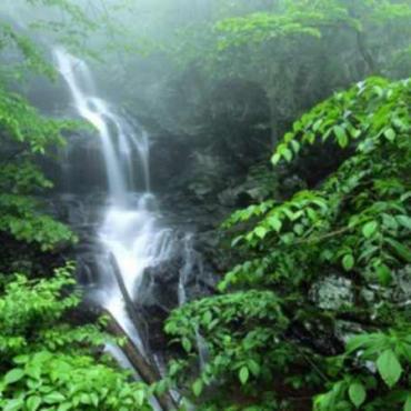 Shenandoah Natl Park waterfall