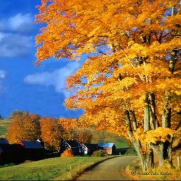 VT Farm and fall colour