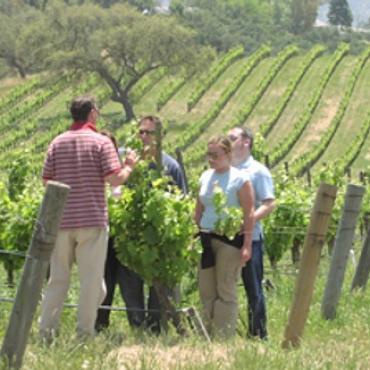 SBA wineTour