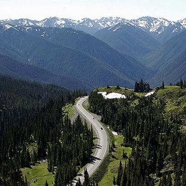 WA Olympic NP Hurricane Ridge