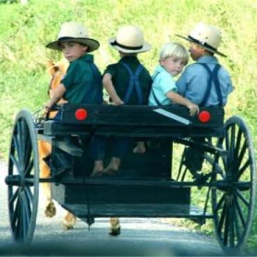 PA Amish kids-and-buggy[1]