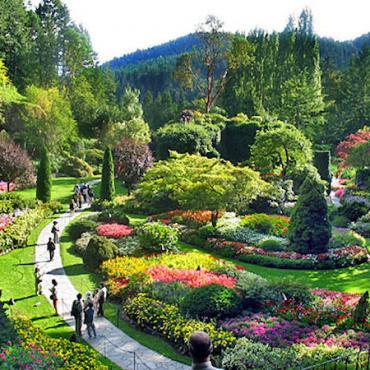 Victoria butchart_gardens2[1]
