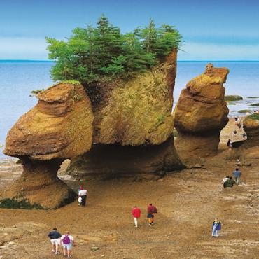 NB Hopewell Rocks.jpg