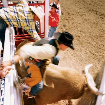 calgary_stampede_bullrider[1].jpg