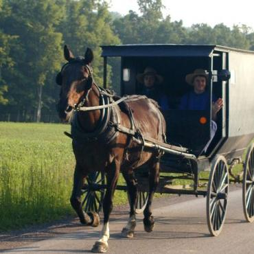 PA Amish-horse-buggie[1].jpg