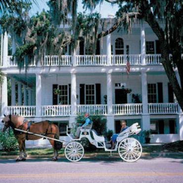 South Carolina horse drawn cart.jpg