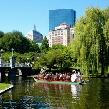 BOS Gardens in summer.jpg