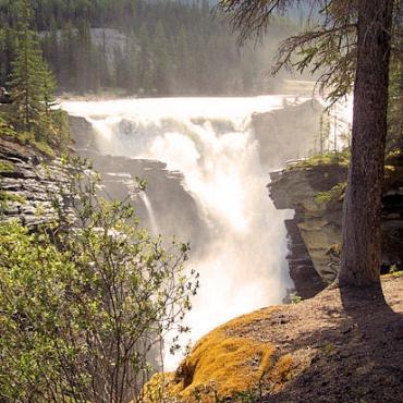 Banff Athabasca falls.jpg