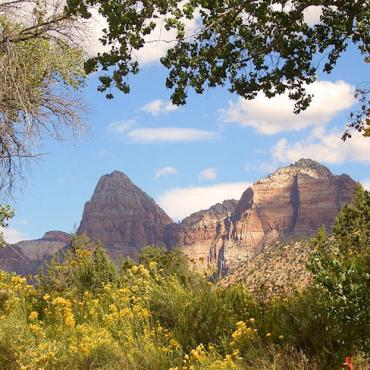 UT Zion Canyon.jpg