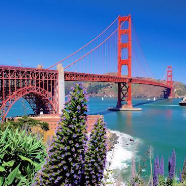 TRAFLGR Golden Gate Bridge.jpg