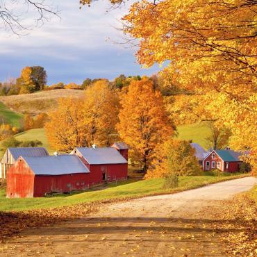TRAFLGR New England Foliage.jpg