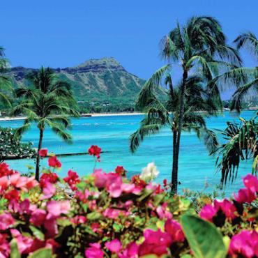 TRAFLGR Waikiki Beach.jpg