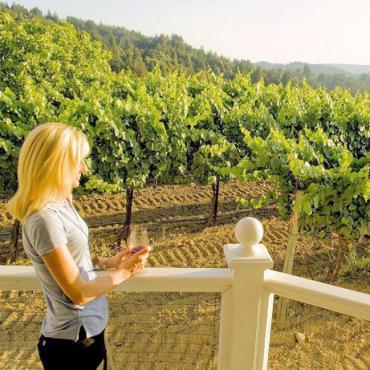 CA Vineyard.jpg