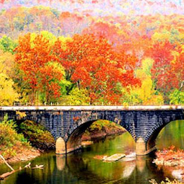 NE Fall foliage.jpg