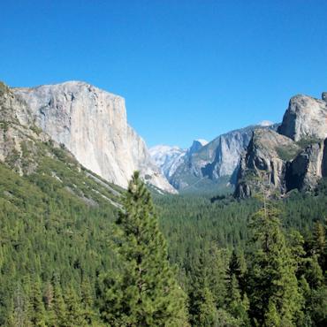 CA Yosemite.jpg